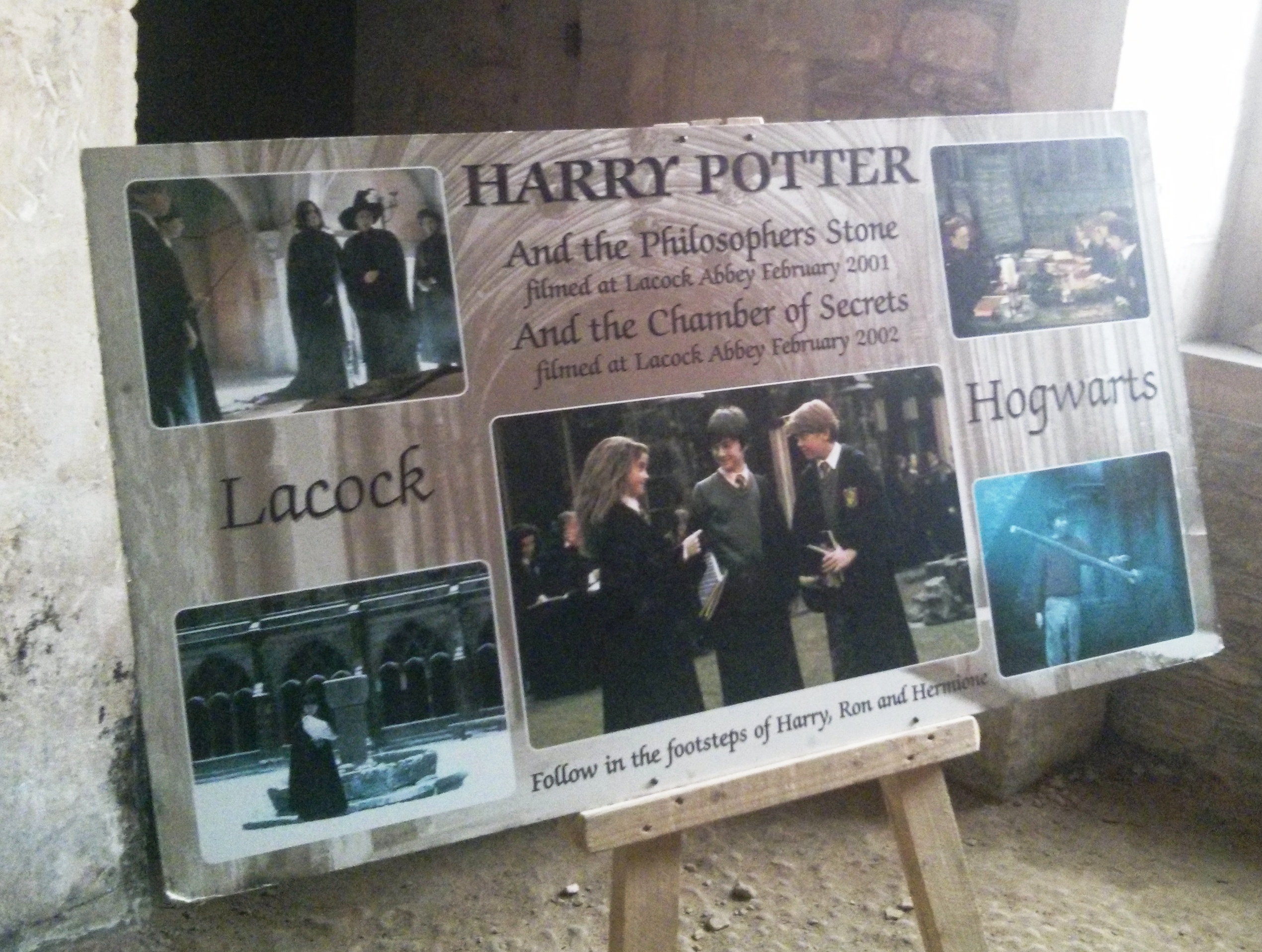 Harry potter and the chamber of secrets essay
