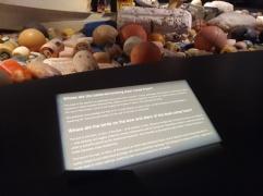 vortex-vancouver-aquarium-information-board-two