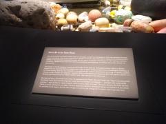 vortex-vancouver-aquarium-information-board
