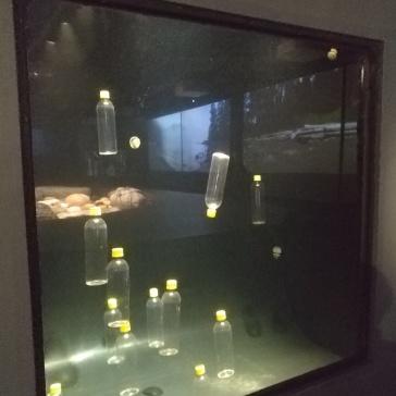 vortex-vancouver-aquarium-plastic-bottles